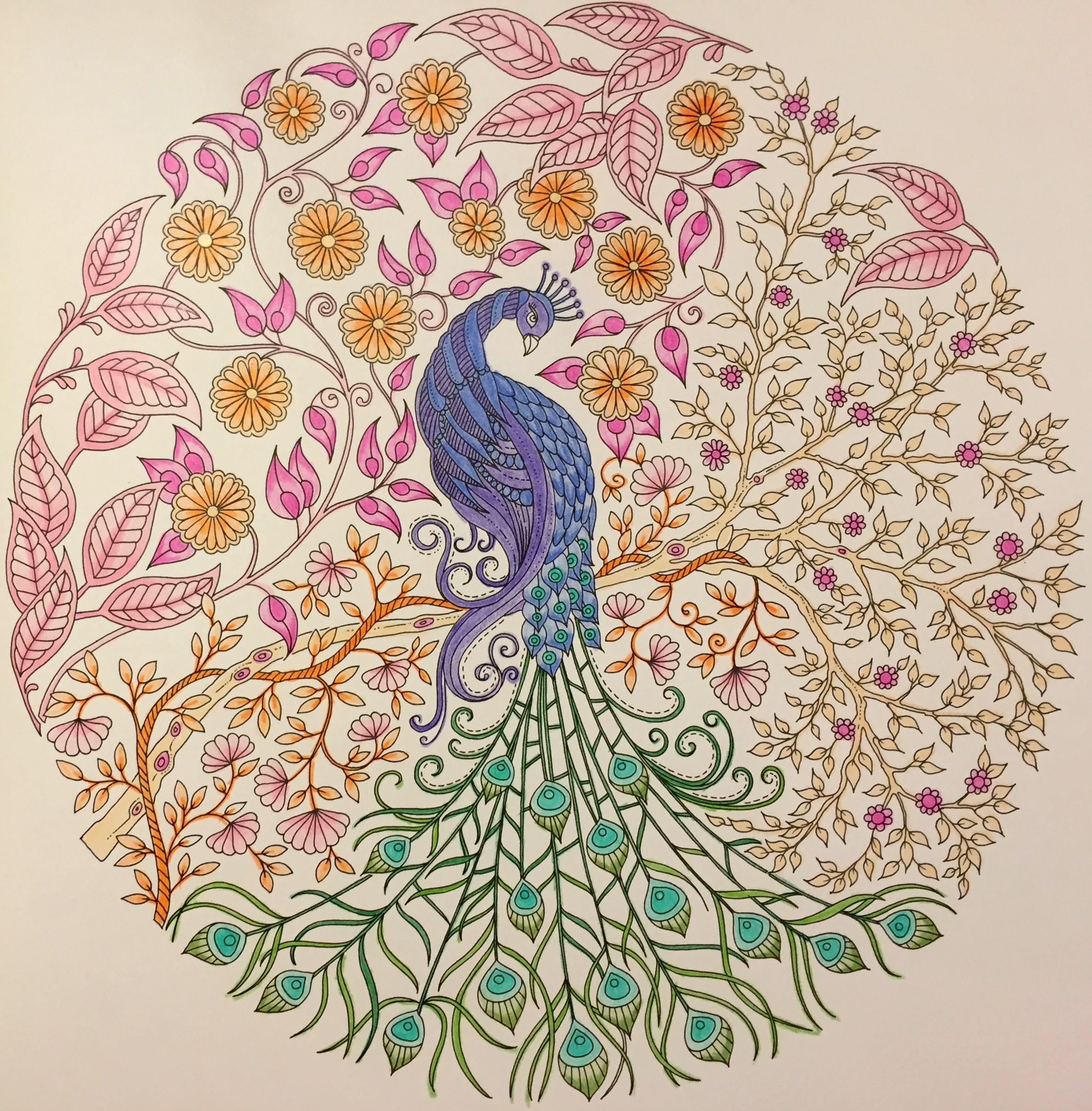 My Peacock Done With Crayola Coloured Pencils From Johanna Basfords Secret Garden Book