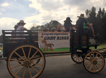 Moruya Country Market - clydesdale ride - cart